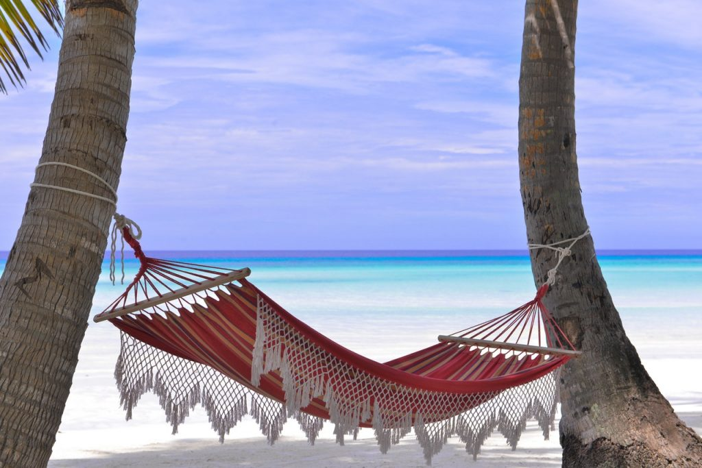 Earn Passive Income while you relax